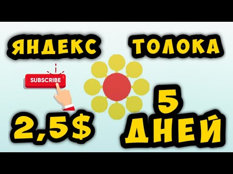 Как заработать деньги в интернете. Яндекс Толока сколько можно заработать в 2020?