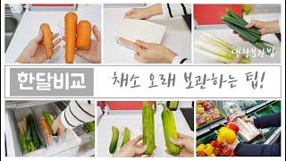 ENG) 식재료보관/채소 오래 보관하는 방법/야채 한달…
