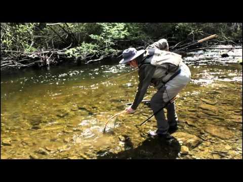 Tenkara Fishing On The River Ceiriog North Wales 2016