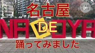名古屋駅や名古屋城など人気はありましたがやってきました! 下らない動...