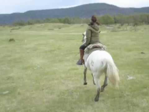 Horse Riding Patagonia 6