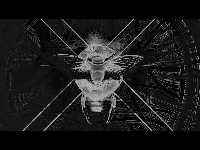 Encephalon - Naraka