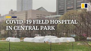 Coronavirus field hospital set up in New York's Central Park as city's health crisis deepens