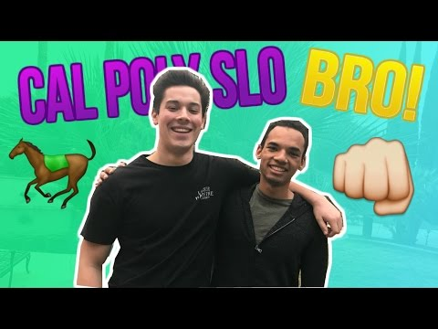 Livin Life SLO: What's in store at Cal Poly SLO