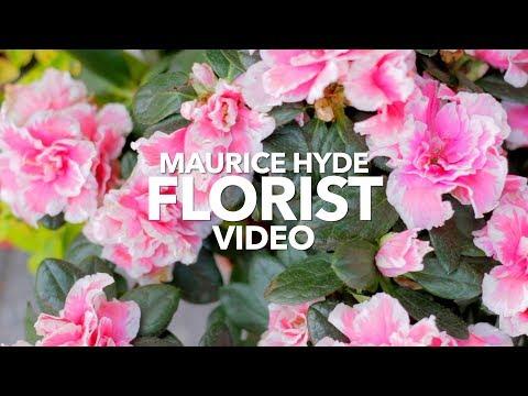 Maurice Hyde Florist Video 2017