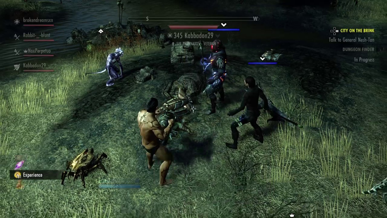The Elder Scrolls Online: Tamriel Unlimited-The Naked Nord