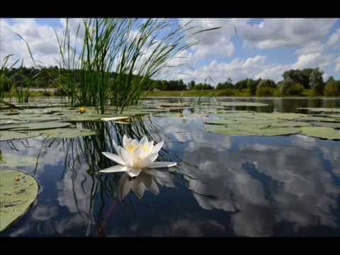 Claude Debussy - Reflets dans l'eau - Reflections in the ...