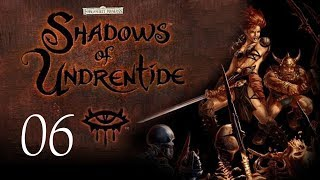 Neverwinter Nights: Shadows of Undrentide - 06 - Into the Snowy Wastes