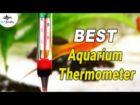 Best Aquarium Thermometer In 2020 – For Water Temperature