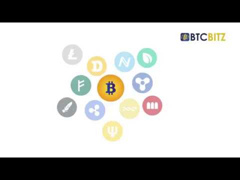 Best Bitcoin Trading Business Plan BTC Bitz
