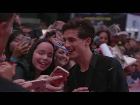 Beautiful Boy: Timothee Chalamet Red Carpet Premiere Arrivals TIFF 2018