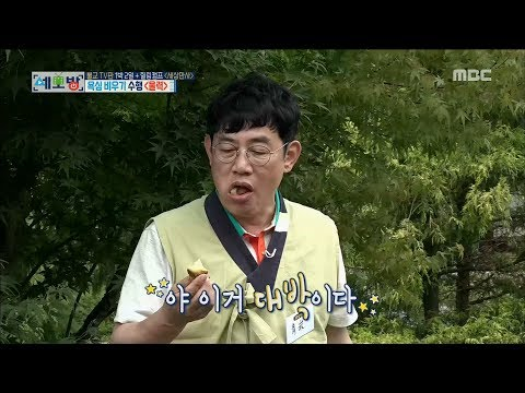[All Broadcasting in the world] 세모방:세상의모든방송 -'Is this a sweet potato restaurant?' 20170805