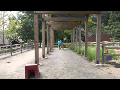 Turtle Back Zoo - Pony ride -