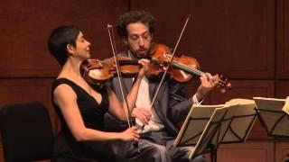 Beethoven String Quartet Op. 132 in A minor, Assai sostenuto-Allegro - Ariel Quartet (excerpt)