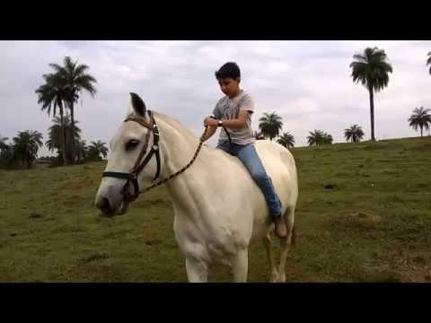 Eduardo Moreira - Pânico - 04/08/2015 from YouTube · Duration:  1 hour 15 minutes 6 seconds