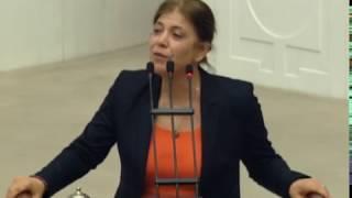 Meral Danış Beştaş'ın cezaevinden çıktıktan sonraki ilk konuşması
