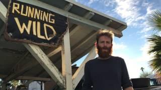 Running Wild Films in 2017