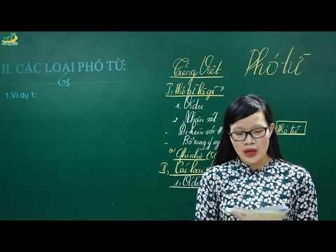 Ngữ Văn Lớp 6 –Bài Giảng Phó Từ Ngữ Văn Lớp 6|Soạn Bài |Tiếng Việt Từ Và Câu |Cô Lê Hạnh