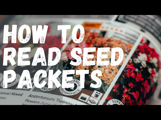 How to read seed packets for success in your garden