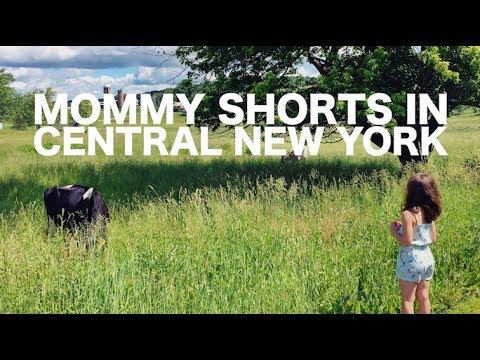 TRAVEL TUBE: Mommy Shorts in Central New York