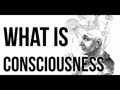 Consciousness - What is it?