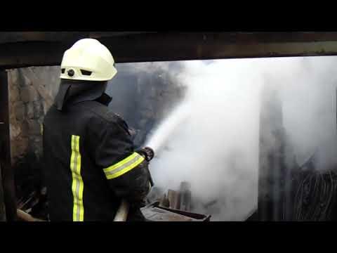 Продовжується гасіння пожеж сухої трави та лісової підстилки у Луганській області
