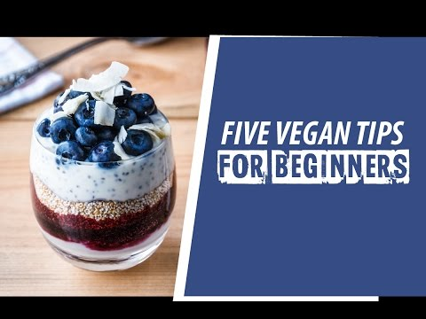 Five Vegan Tips for Beginners - Farm Animal Rights Movement (FARM)