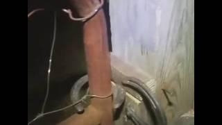 Horse shoes gate latch cvpm