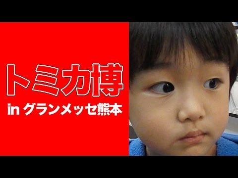 トミカ博in グランメッセ熊本 201511〜15 110〜112せいじろう2歳