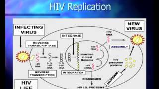 Basic Course in HIV - Pathophysiology and Natural History of HIV Infection