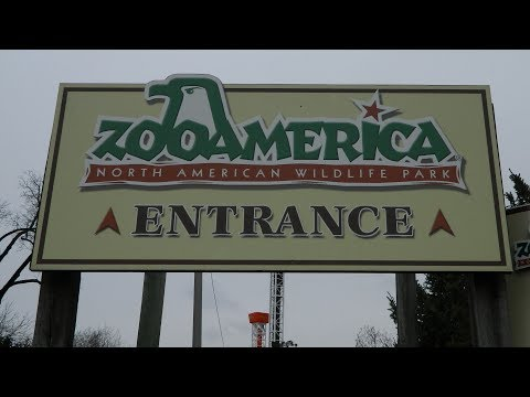 Zoo America March 2018