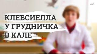 видео Клебсиелла пневмония (бактерия): симптомы и лечение