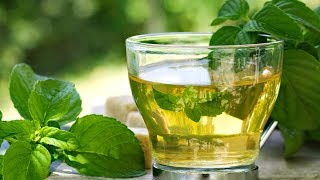 Stop Drinking Mint Tea and Eating Mint Leaves!