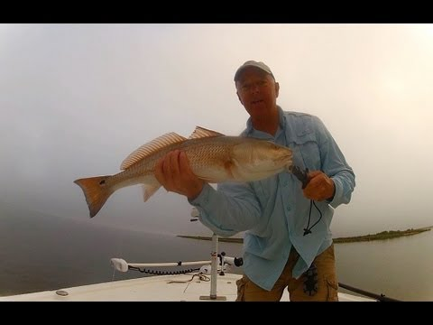 Choctawhatchee Bay Fishing Redfish and Trout - MatrixShad eval.