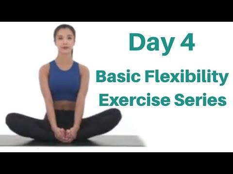 day 4  posture correction  basic flexibility exercise