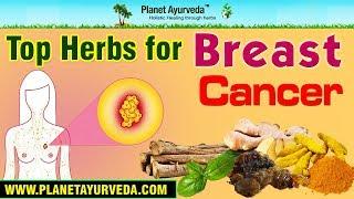 Top Herbs Cancer