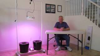 Low Cost Hydroponics Grow Site With Light Stand. Diy