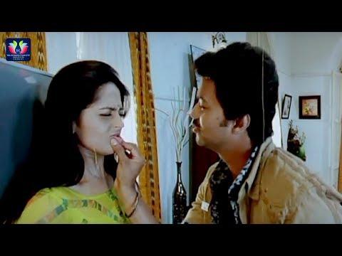 Vijay And Anushka Funny Comedy Scenes    Latest Telugu Comedy Scenes    TFC Comedy