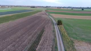 Auf den Feldern zwischen Lank-Latum und Nierst...