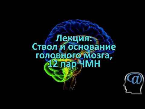 Тройничный нерв - воспаление, лечение. Невралгия