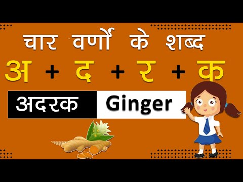 चार वर्णों के शब्द learn hindi four letter words for