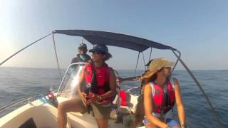 The Sri Lankan Blue Whale Project Field Season 2013