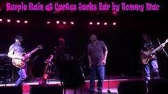 Purple Rain by Tommy Mac at Cactus Jacks Bar in Ahwatukee