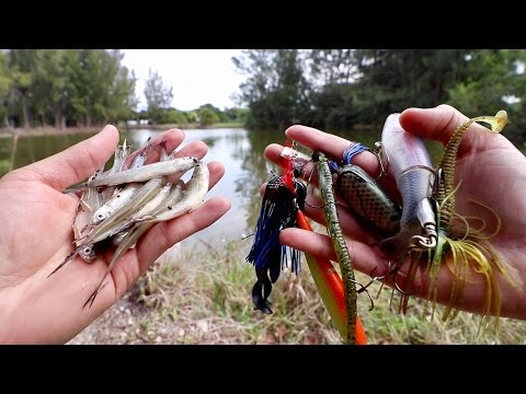 LIVE BAIT Vs. ARTIFICIAL LURE Fishing Challenge -- Which Catches BIGGER Fish???