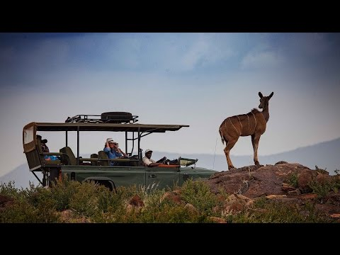 Best safari honeymoon destinations   Luxury honeymoon guide