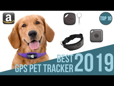 10 Best Gps Tackers For Pets 2019 / Find Your Pet / Top10 Bluetooth & GPS Pet Collar 2019