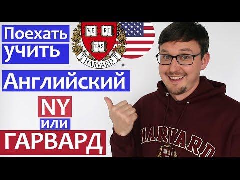 Выучи Английский язык в Гарварде или Нью-Йорке. Языковые школы в США