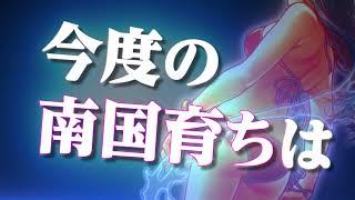 シリーズ最高の翔びっぷり。 https://www.heiwanet.co.jp/latest/nangok...