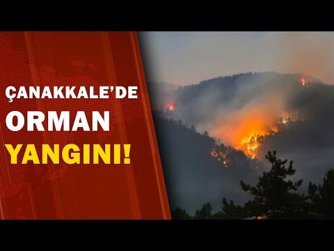 Çanakkale'de Orman Yangını! / A Haber