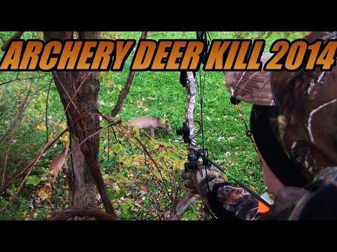 Compound Bow Deer Hunt Archery Kill 2014